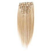 Clip on hair extensions 40 cm #27/613 Light blonde Mix
